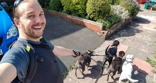 Selfie with Dogs House Sitting in Brighton