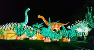 Dinosaur Great Lanterns