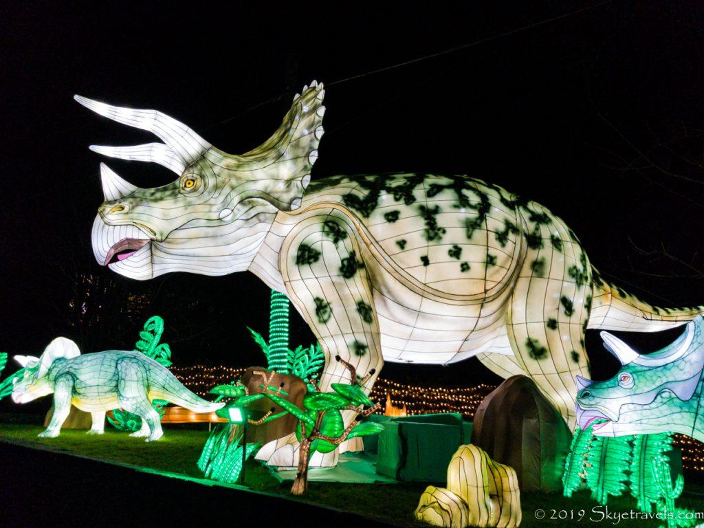 Triceratops Lantern