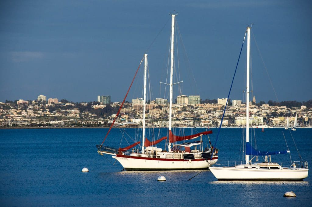 Private Boat Tours in San Diego Are More than Just Whale Watching 1